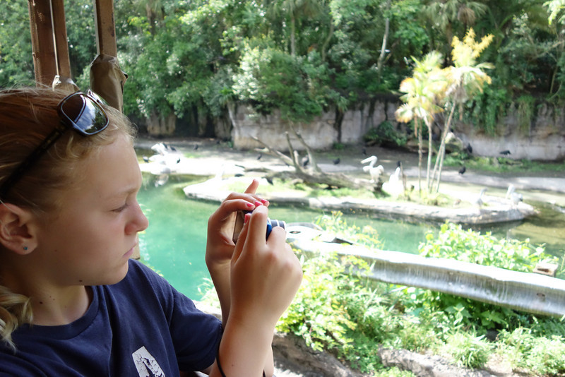 Jessie taking pictures on the African safari.