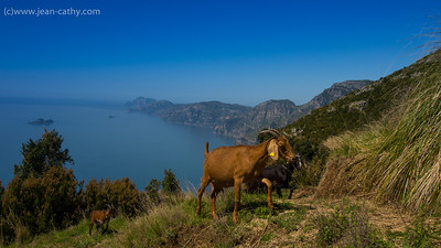 Amalfi_Coast_Hike--20120427-1747-156