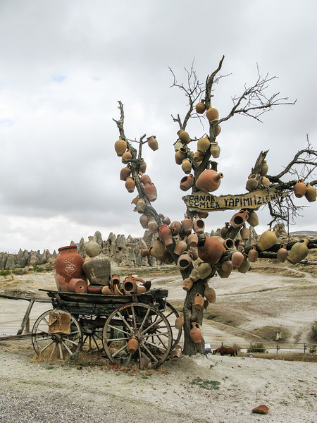 Cappadocia, tree with pots