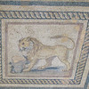 Ephesus, The Terrace Houses - Lion, floor mosaic