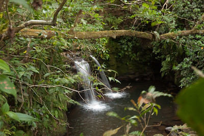 A waterfall near to the Hooke's house.