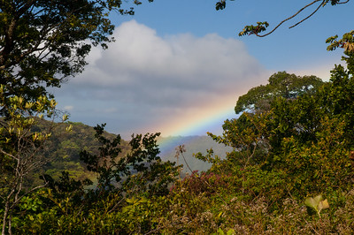Our first morning in Monteverde, after a night of rain, brought a beautiful rainbow.