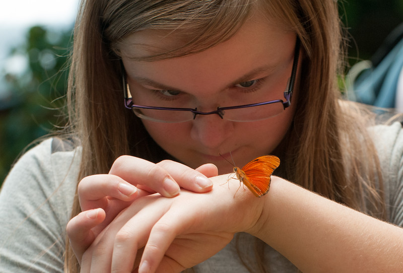 Mara examines this Julia butterfly up close.
