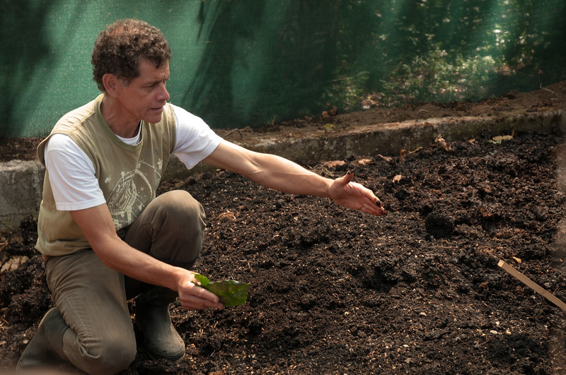 Guillermo explains how they compost the coffee husks.