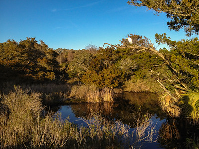 An egret oversees this little inlet, where a crocodile waits on the left far bank, and my shadow puts me in this sunset scene.  - Kiawah Island, SC.