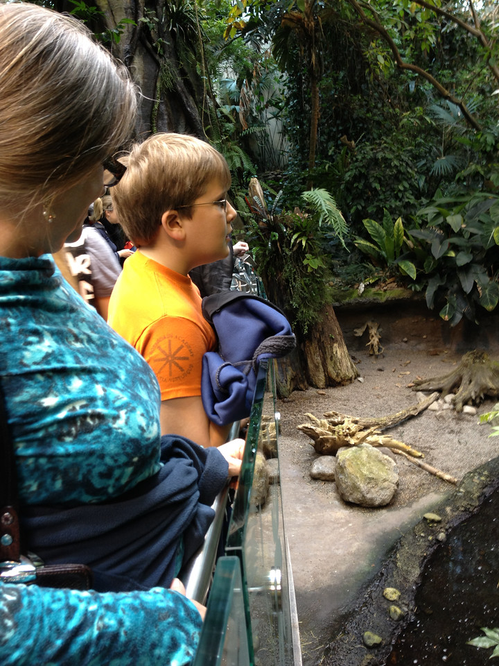 Exploring the wildlife at Biodome, Montreal.