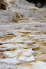 Palette Terrace in Mammoth Hot Springs