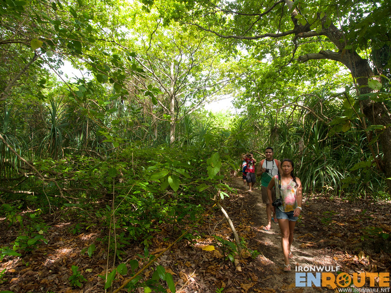 Travel bloggers at the forest trail