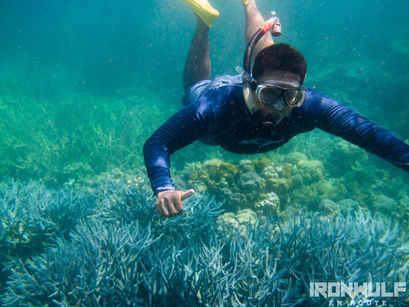 The author snorkeling at Balinsasayaw Reef