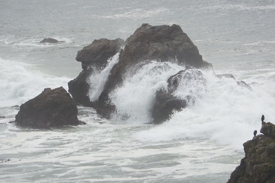 Driving Highway 1 between Bodega Bay and Fort Ross Jan 2013