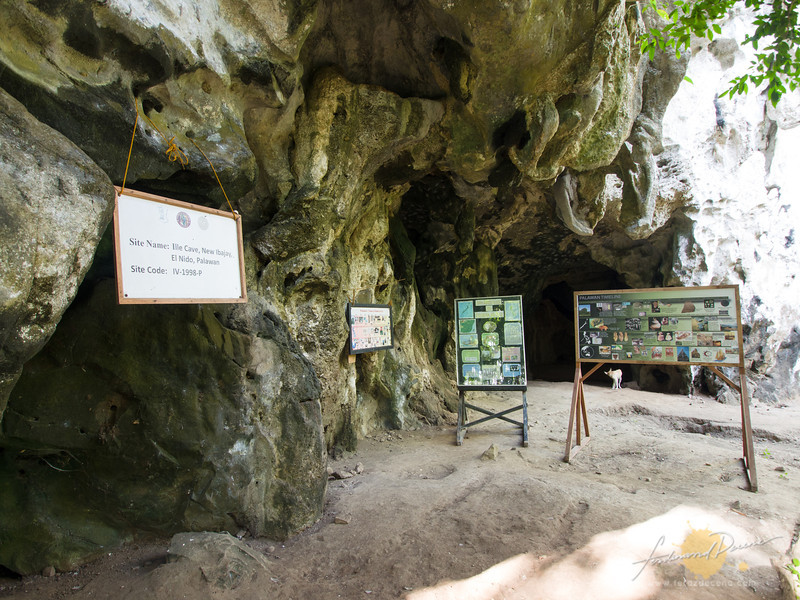 The El Nido Ille Cave 14000 Years Of History In The Rock