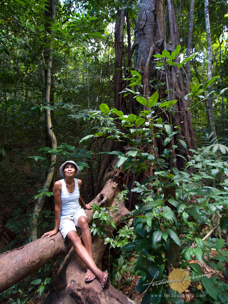 Ate Cynthia on the roots of a balete tree