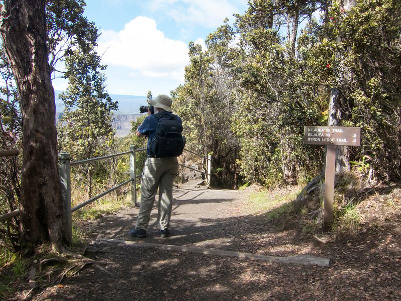 Hawaii Volcanoes Nat. Park: Kilauea Iki Trail.