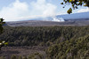 Hawaii Volcanoes Nat. Park: Kilauea Iki Trail. Halema'uma'u Crater in the distance.