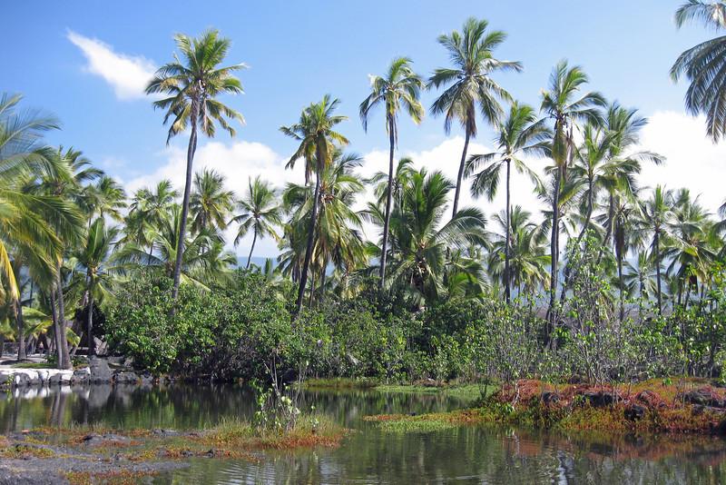 Lagoon at the Place of Refuge, Honauna, HI