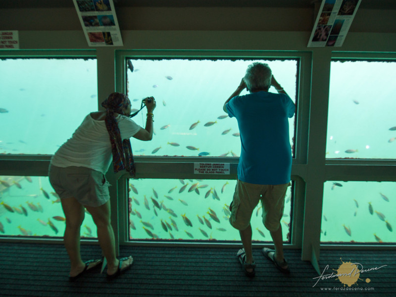 At the Borneo Reef World Pontoon