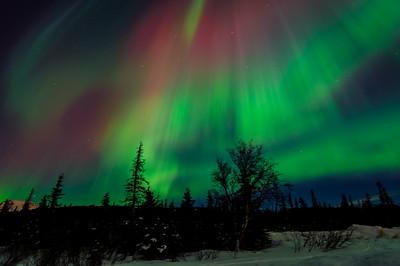 Northern Lights - Anchorage, Alaska