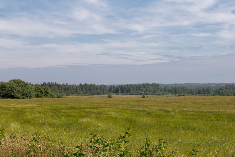 Near Morrison land, Kings County, PEI