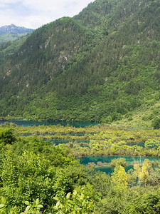 Bonsai Shoal, Jiuzhaigou National Park, Sichuan Province