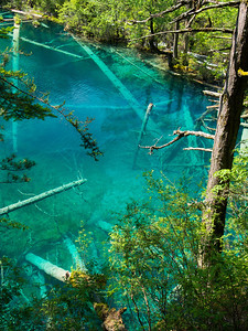 Tiger Lake, Jiuzhaigou National Park, Sichuan Province