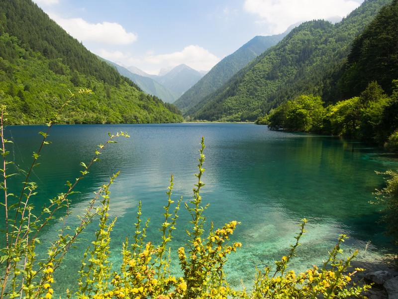 Rhinoceros lake, Jiuzhaigou National Park, Sichuan Province
