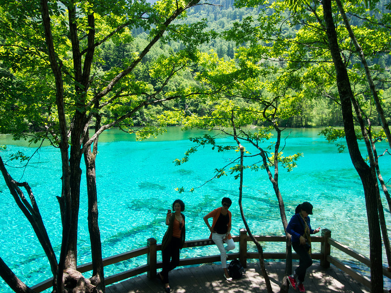 Colorful Lake (五花海), Jiuzhaigou,