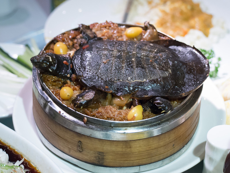 Turtle dish at dinner; no one actually tried it.
