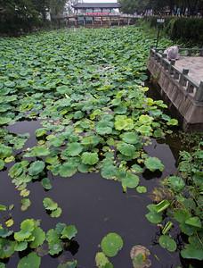 镇江金山公园 (白蛇传的金山)Jinshan Park, Zhenjiang, famous for the Legend of Lady White Snake
