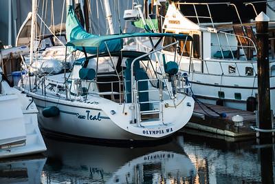 Sailboats moored at Percival Landing.