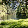 Merced River scene in Devils Elbow area