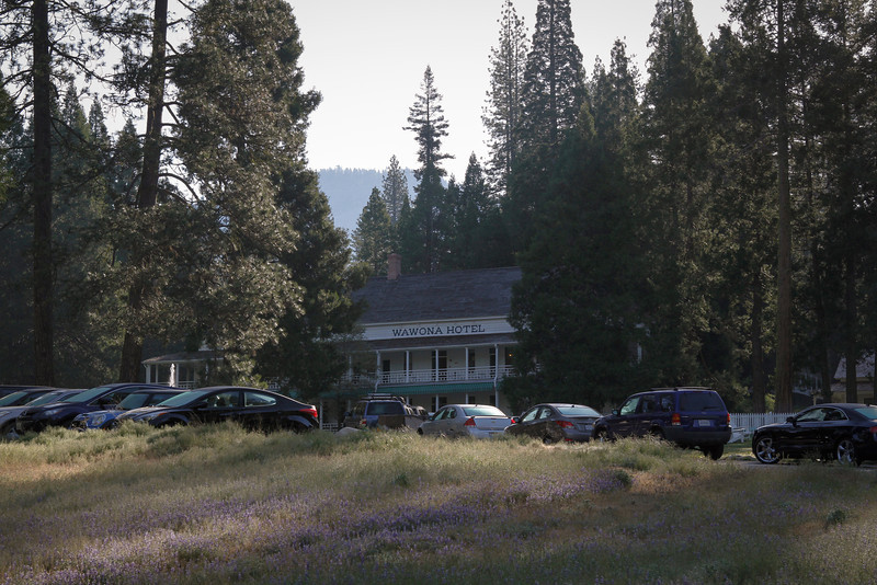 The Wawona Hotel is a National Historic Landmark and has been open since the 1850's