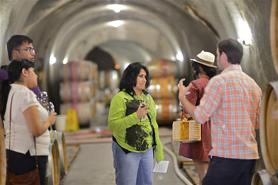 The advocate converted to winery manager explaining things