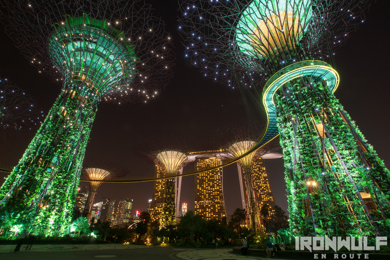 The supertrees and the Marina Bay Sands in view