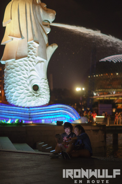 By the Merlion
