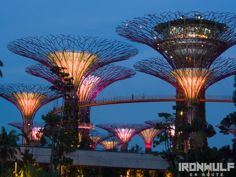 Zooming in at the supertrees and the OCBC skyway