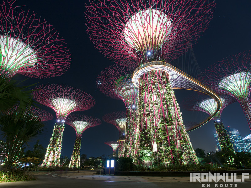 These supertrees stands 16-story high