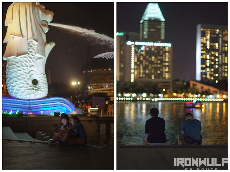 At the Merlion Park