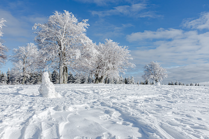 A desolate snowman stands guard over a grove of frosted trees near Schullandheim Luginsland
