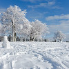 A desolate snowman stands guard over a grove of frosted trees near Schullandheim Luginsland