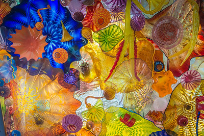Dale Chihuly Glass in Tacoma, Washington