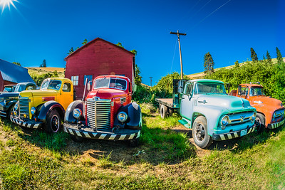 Old truck collection in the Palouse