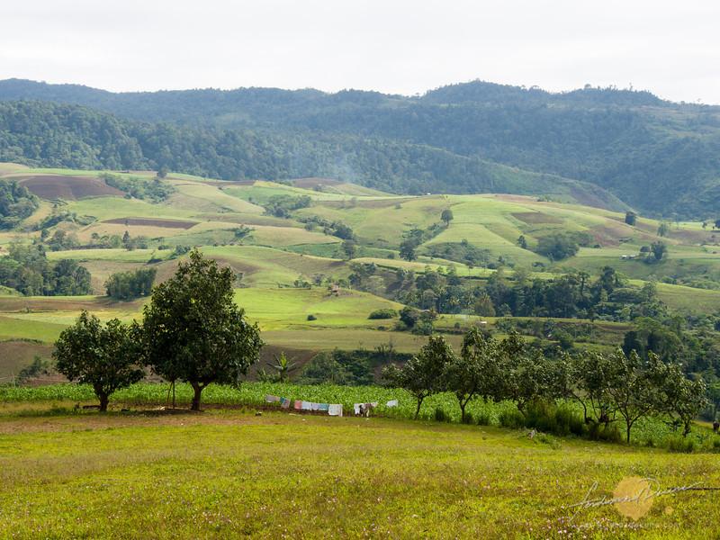 Beautiful landscape of Alamada