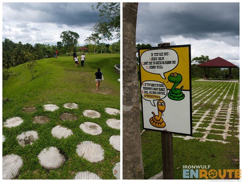Nice garden patterns and amusing cartoon signage