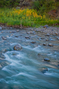 Gardiner River - Yellowstone