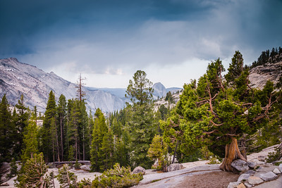 Olmstead Point on Tioga Pass, Yosemite National Park