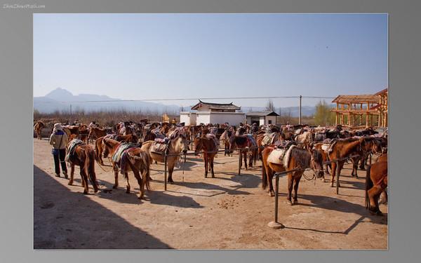2013_02_25 (Lijiang 2nd Day)