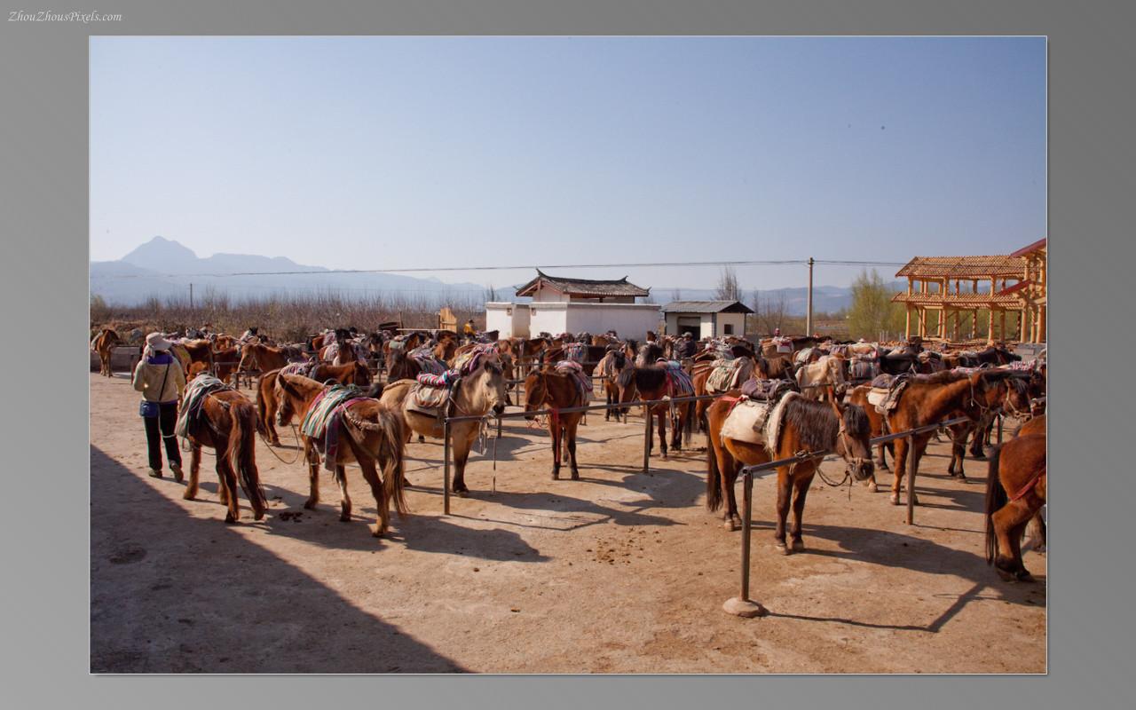 2013_02_25-5 Slideshow (Lijiang 2nd Day)-003