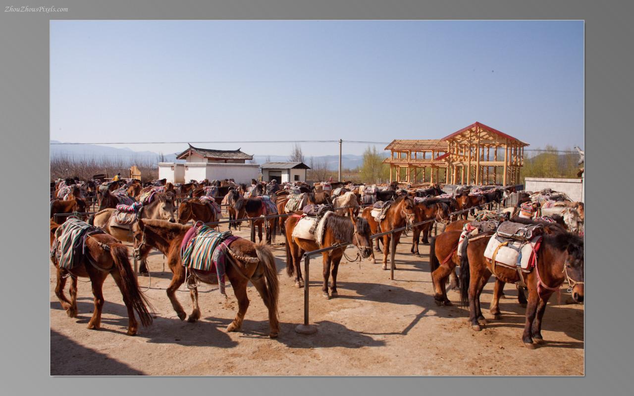 2013_02_25-5 Slideshow (Lijiang 2nd Day)-002