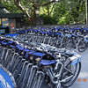Bikes for hire at Central Park