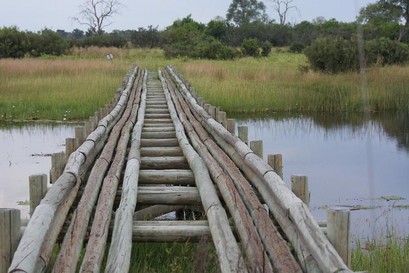 Bridge to more adventures.